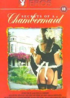 Secrets of a Chambermaid Hizmetçi Fantazisi reklamsız izle
