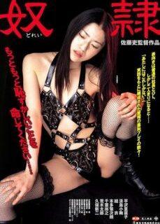 New Tokyo Decadence The Slave – İşkenceli Japon Sex Filmi İzle