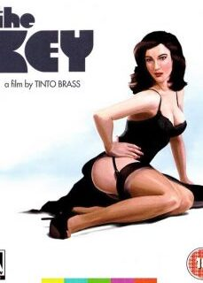 Tinto Brass Filmi The Key Türkçe Dublaj İzle full izle