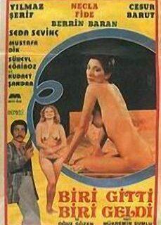 Biri Gitti Biri Geldi 1979 Filmi İzle izle